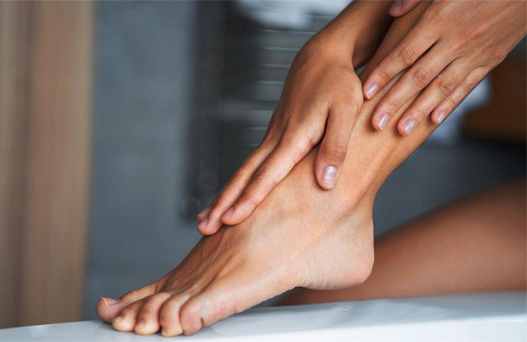 cấu trúc cơ bàn chân