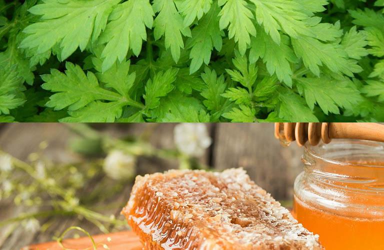 Cách kết hợp ngải cứu và mật ong điều trị thoát vị đĩa đệm