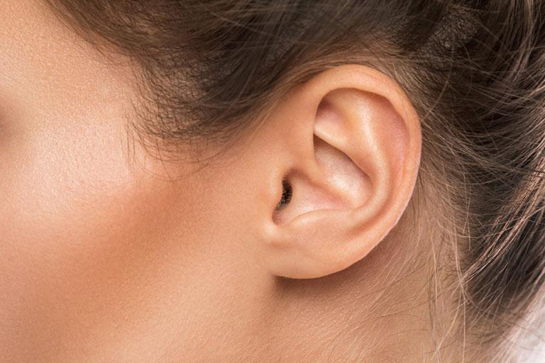 cơ sinh học trong tai