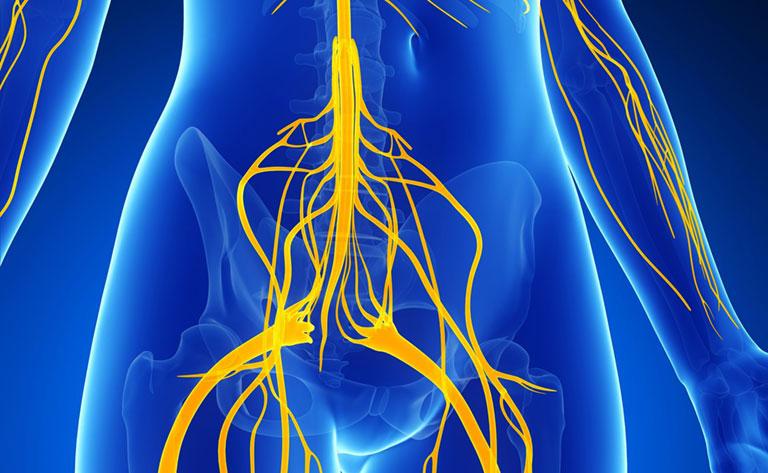 Quy trình kỹ thuật tiêm ngoài màng cứng