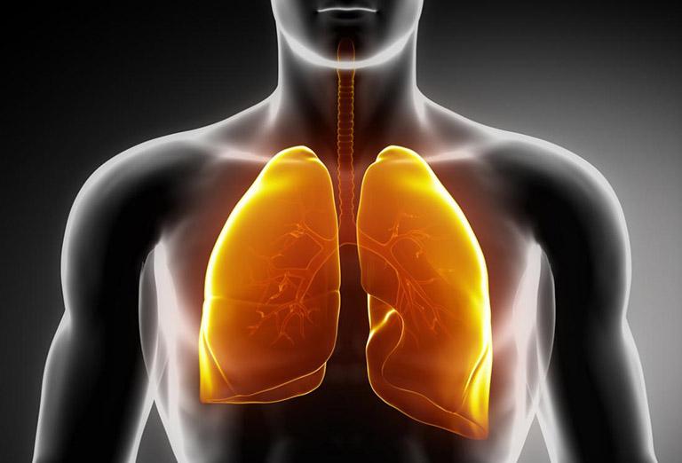 Mô sẹo trong phổi