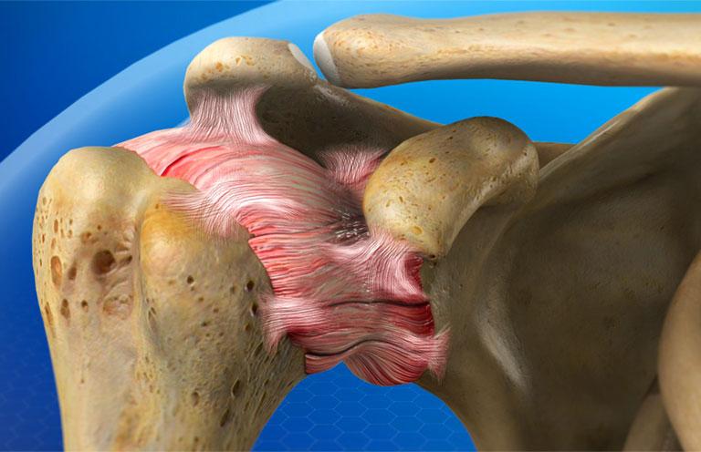 Giải phẫu xương vai