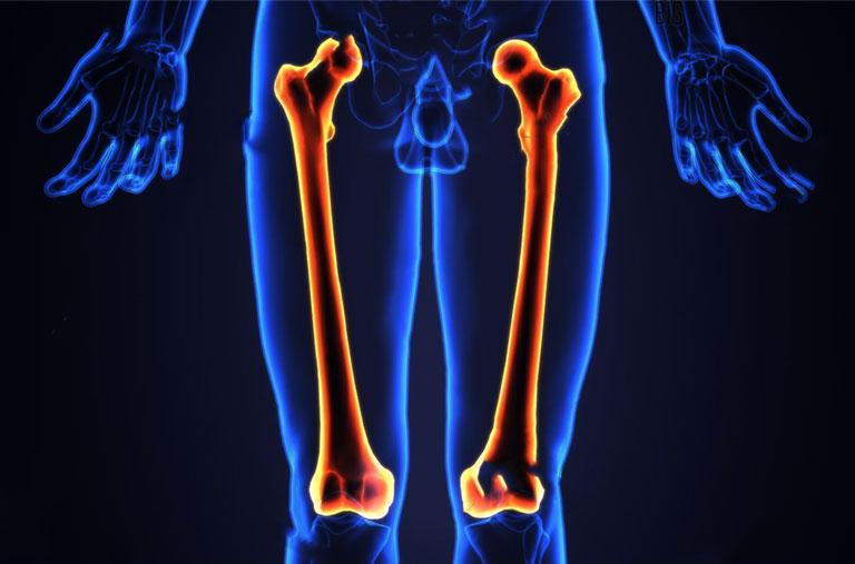 xương đùi