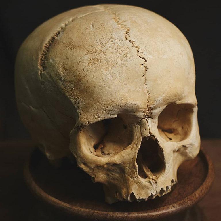 hình ảnh hộp sọ người