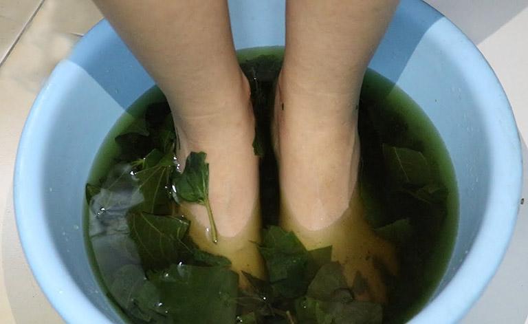 Cách ngâm chân với nước lá lốt giảm tê bì và đau thần kinh tọa