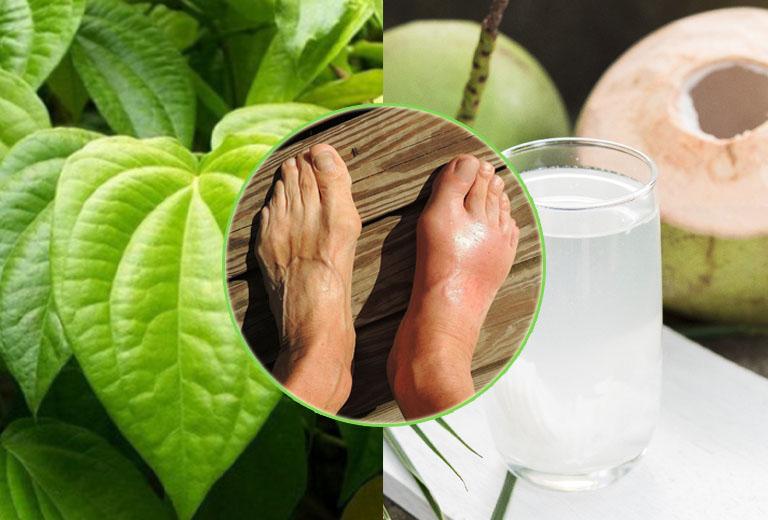Cách chữa bệnh gout bằng nước dừa và lá trầu không