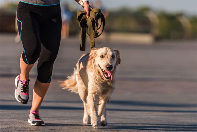 bị đau khớp gối có nên chạy bộ không
