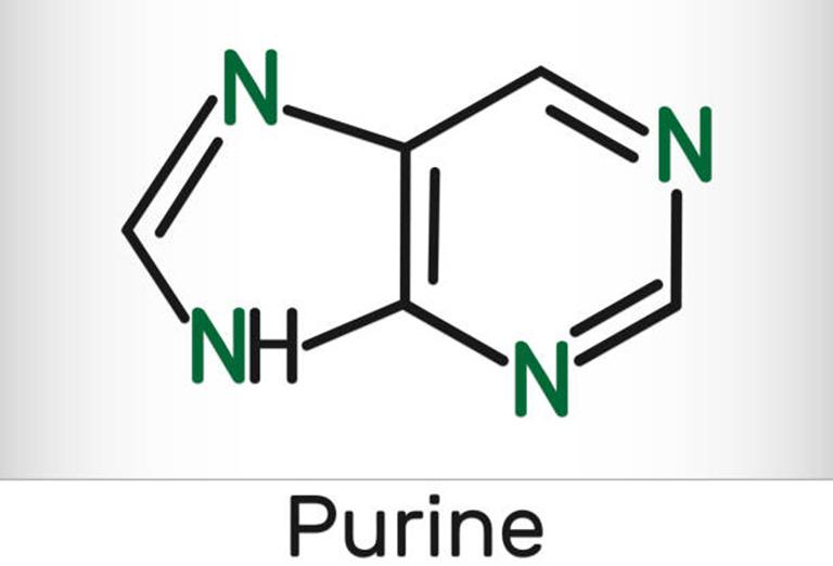 purin là gì