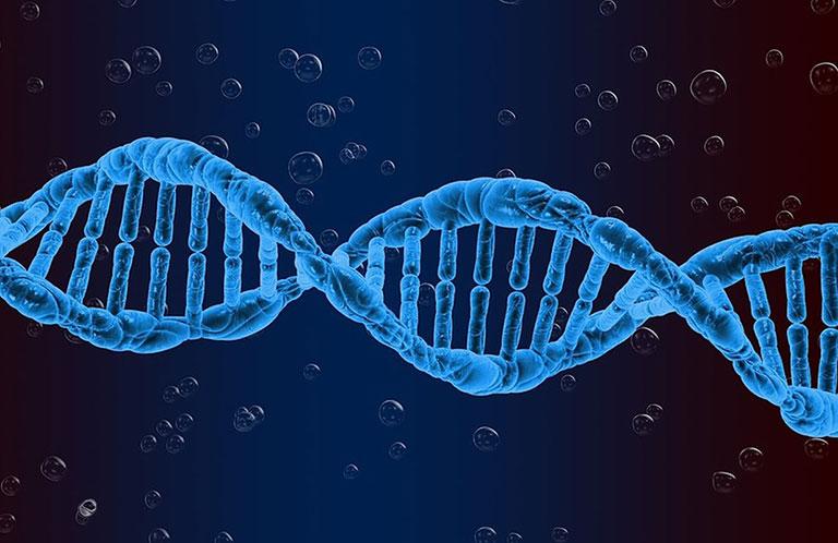 Bệnh lupus ban đỏ có di truyền không