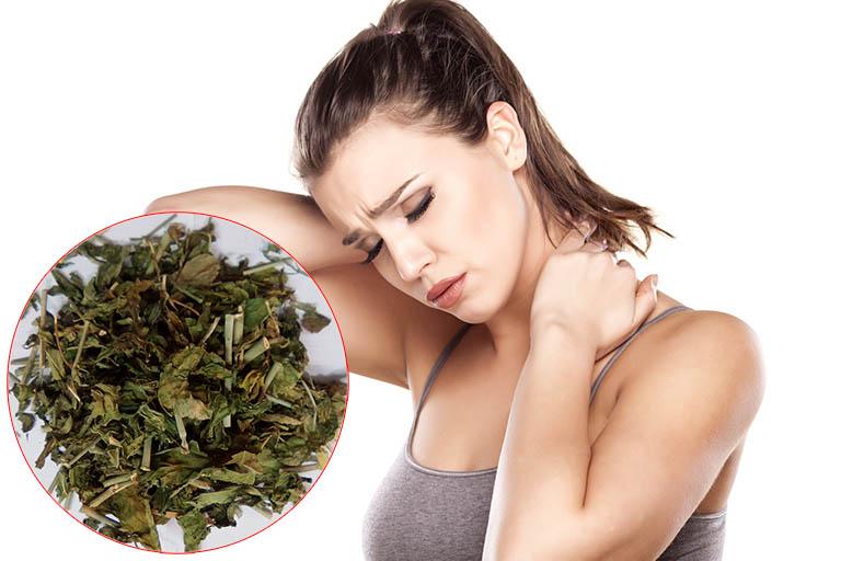 Cách chữa đau vai gáy bằng thuốc nam