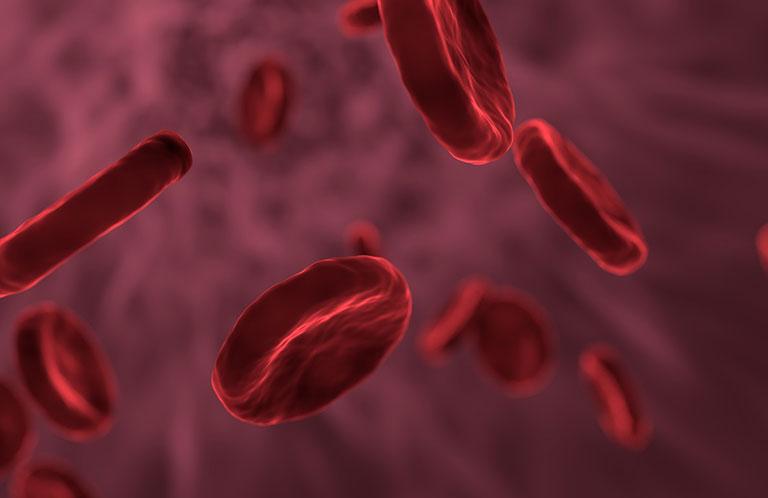 Tế bào gốc trị lupus ban đỏ
