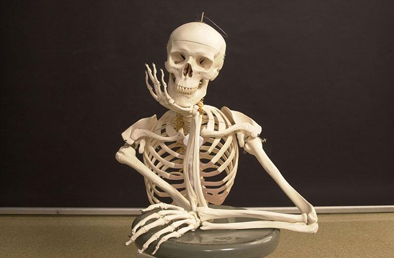 calcium phòng ngừa loãng xương