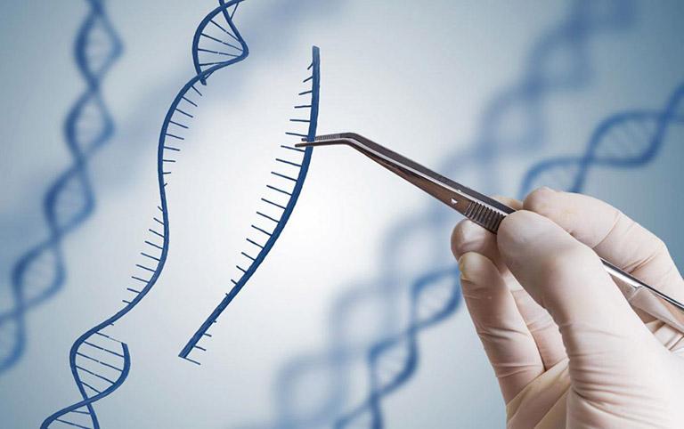 Liệu pháp gene