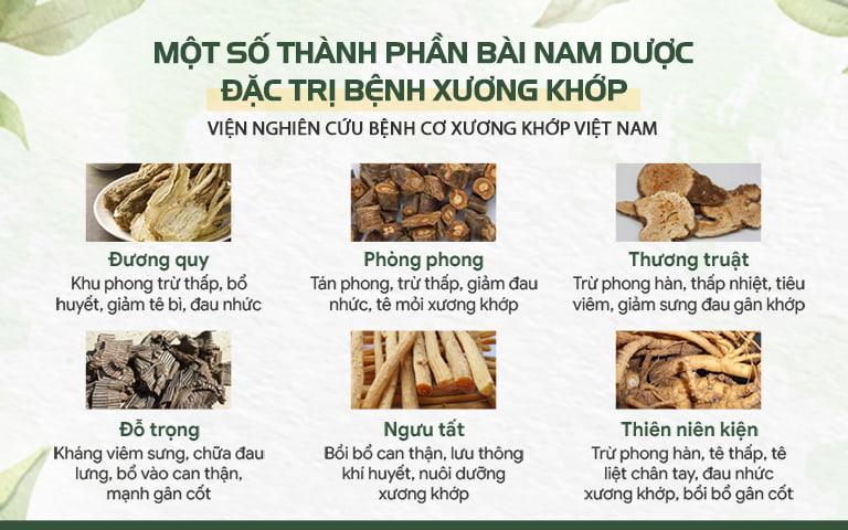 Thành phần bài thuốc điều trị thoát vị đĩa đệm được nghiên cứu thành công bởi IHR Việt Nam