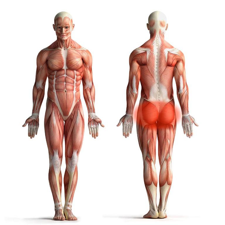 Hội chứng Piriformis